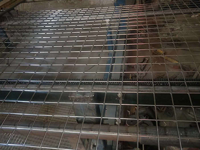 不锈钢电焊网,网片